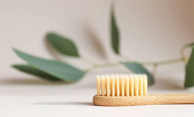 Santé bucco-dentaire et environnement
